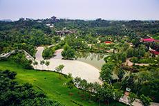 园博园湿地公园