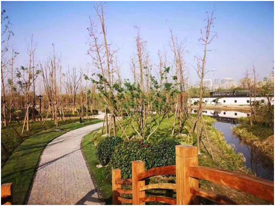 净水厂宛若江南园林 碧水源MBR技术助推地下式污水处理厂发展